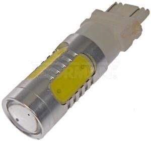 Turn Signal Light Dorman 3157W-HP