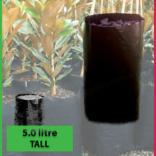 5 lt TALL Plant Bags - Pack of 100 - Black Polyethylene planter Growbags