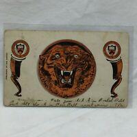 Vintage Postcard Princeton University Scene Van Marter Tiger Tigers 1906