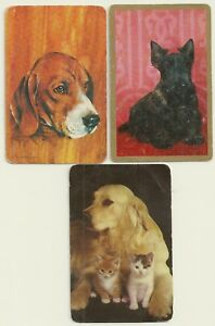 Vintage swap cards Three nice Dogs with Cat kittens good/very good blank backs