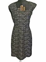 BANANA REPUBLIC Women's Sleeves Lace overlay Sheath Dress Charcoal Size 10""