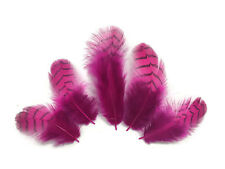 10 Pieces - Hot Pink Dyed Gray Partridge Small Plumage Feathers Jewelry Barred