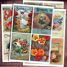 Vintage Seed Packets art craft stickers A4 gloss 4 self adhesive sheets
