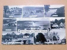 RP Postcard-SOUTH DEVON~TORQUAY,DARTMOOR PONIES,RIVER DART,LADRAM BAY,COCKINGTON