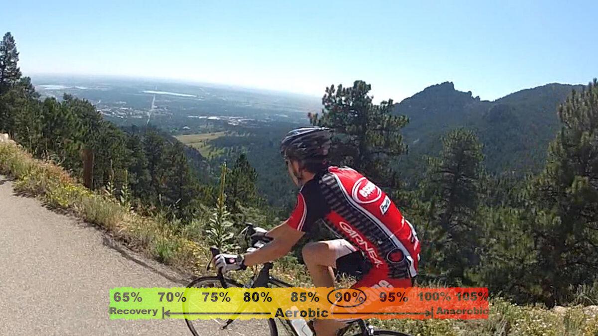 Seek Out Cycling