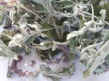 ARMENIAN WILD MINT Dried Leaves Loose Tea 3.5 OZ, 100 gr Herbal tea PREMIUM