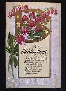 Bleeding Heart~ Flower Meaning~Vintage  Embossed Nash Greetings Postcard-k-594