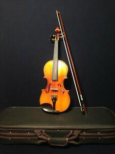 Advanced Symphony 4/4 Size Solid Wood Violin Outfit w/Ebony Fittings |SJV 01AA|