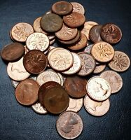 Lot of 50x 1961, 1962, 1963 Canada Small Cent Pennies - Great Condition Coins