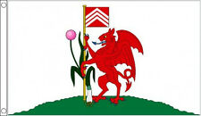 CITY of CARDIFF FLAG Wales Welsh Red Dragon Flags