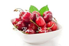 4 kinds of fruit Packages Edible Fruit Seeds Bonsai Garden Fruit Plant Sweet