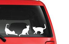 Cat Family Vinyl Decal Sticker Car Window Bumper Laptop Crazy Lady Kitty Feline