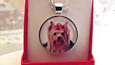 YORKSHIRE TERRIER PHOTO PENDANT 24 INCH SILVER PLATED CHAIN GIFT BOX BIRTHDAY