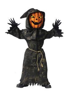 Bobble Head Pumpkin Child Costume Size Large 12-14