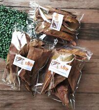 "28g Ketapang catappa indian almond leaf A+6-8"" shrimp betta fish aquarium tank"