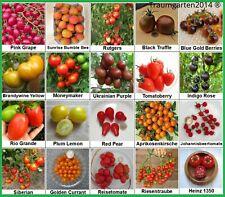 Tomate Set 2: 20 Historische Alte Tomatensorten Tomatensamen Samen Saatgut Mix