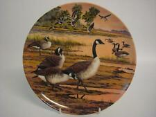 BRADEX DOMINION CHINA CANADA GEESE WINTER HOME FROM WINGS UPON THE WILD PLATE