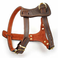 Heavy Duty Leather Big Dog Harness Soft for Small Large Dogs Boxer Pitbull Brown