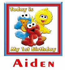 Personalized Elmo's World 1st Birthday Party T Shirt Gift with Name On