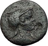AMISOS in PONTUS 120BC Mithradates VI AMAZON Rare R1 Ancient Greek Coin i58339