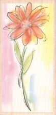 """Watercolor Daisy Flower 2"""" x 4"""" ~ Hampton Art Rubber Stamp ~ Free Shipping ~ NEW"""