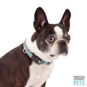 Martha Stewart Pets Aqua Colored Bone Print Brown Fashion Collar - Size XS - NEW