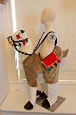 Boutique Llama Alpaca Ride In South America Costume Kids Boys Girls 3-7 NEW