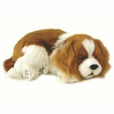 Petzzz Soft Toy Dog Puppy Pet Kids Children Cavalier King Charles 96309