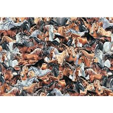 Impossible puzzle-chevaux