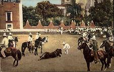 Mexiko México Postcard ~1910 Un Coleadero Stierkampf Stiere Bullfight ungelaufen