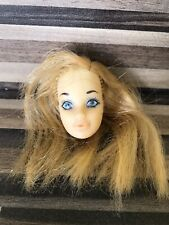 Vintage Barbie Doll Head Steffie Face OOAK Project