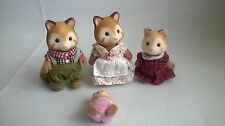Sylvanian Families Chestnut Mulberry Racoon famille figures baby babies figues