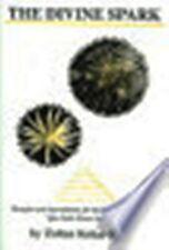 The Divine Spark by Zoltan Kokai-kuun (2006)