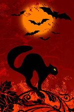 CIALDA in ostia Halloween gatto nero torta
