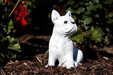 Steinfigur französische Bulldogge sitzend Frostfest Garten Deko Gartenfigur