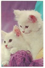 WHITE FLUFFY KITTENS with Lavender YARN Vintage Postcard Cat Purple Background
