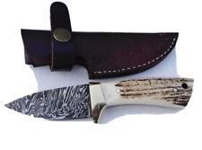 Stag/Antler Handle Damascus Steel Hunting/skinner Knife