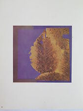 Josef Albers Original Silkscreen Folder XXV-2/Left Interaction of Color 1963