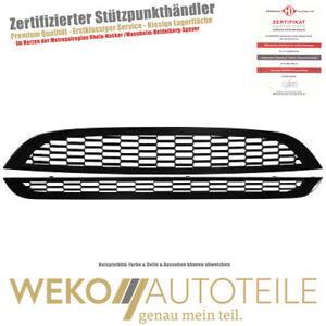Kühlergrill Set Tuning Design SET für mini 1205940 Diederichs