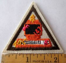 Retired Girl Scout Brownie POINT CLICK GO TRY-IT Computer Internet Patch Badge
