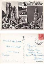 #  DOLOMITI TRENTINE - SALUTI DALLE -  4 VEDUTE  1956