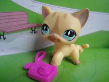 LITTLEST PET SHOP LPS YELLOW SHORTHAIR CAT 886 WITH BROWN STRIPES Original A