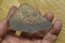 Meteorit Tenham, Chondrit L 6, beobachteter Fall 1879,QLD, Australia,Full slice