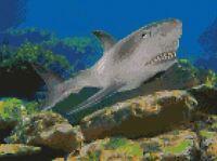 "Great White Shark Counted Cross Stitch Kit 10"" x 7.5"" 25.5cm x 19cm Free P&P"