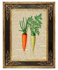 Carrots Art Print on Vintage Book Page Home Kitchen Decor Gift Vegetables Veggie