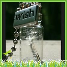 Dandelion wishing charm seed glass bottle pendant Keychain Cute Accessories❤️