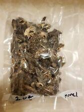 2 Ounces Of Dried Morel Mushrooms From NE  WashingtonFresh from 2020 No Stem