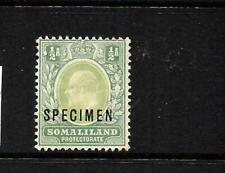 SOMALILAND PROTECTORATE 1904  1/2d  KEVII    MLH  SPECIMEN SG 32s