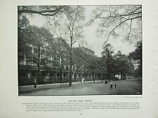 1896 VICTORIAN LONDON PRINT + TEXT ~ CARLTON HOUSE TERRACE