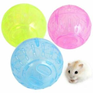 Hamster Jogging Ball Plastic Pet Rodent Mice Toy Gerbil Rat Exercise Play Balls